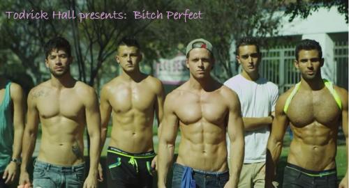 gay parody, pitch perfect parody